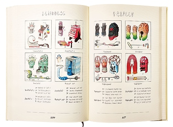 double-page-codex-seraphinianus