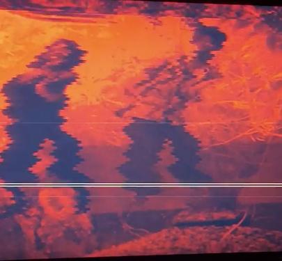 Screen Shot 2020-06-03 at 8.49.32 AM